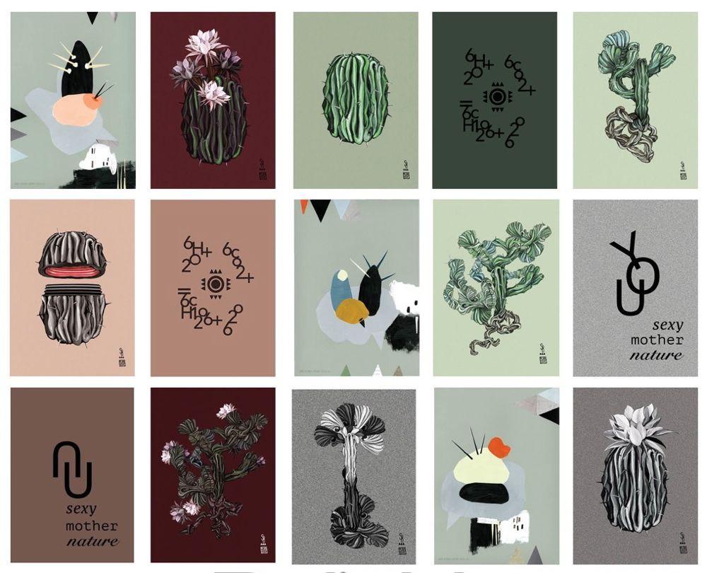 cactus-boligblog.com