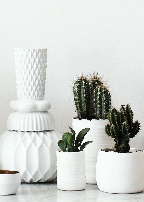 groent-kaktus-boligblog.com_