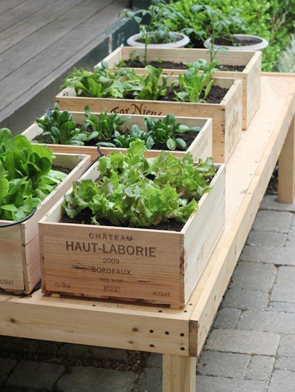 groent-plantekasser-boligblog.com_
