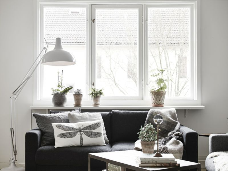 cool-sofa