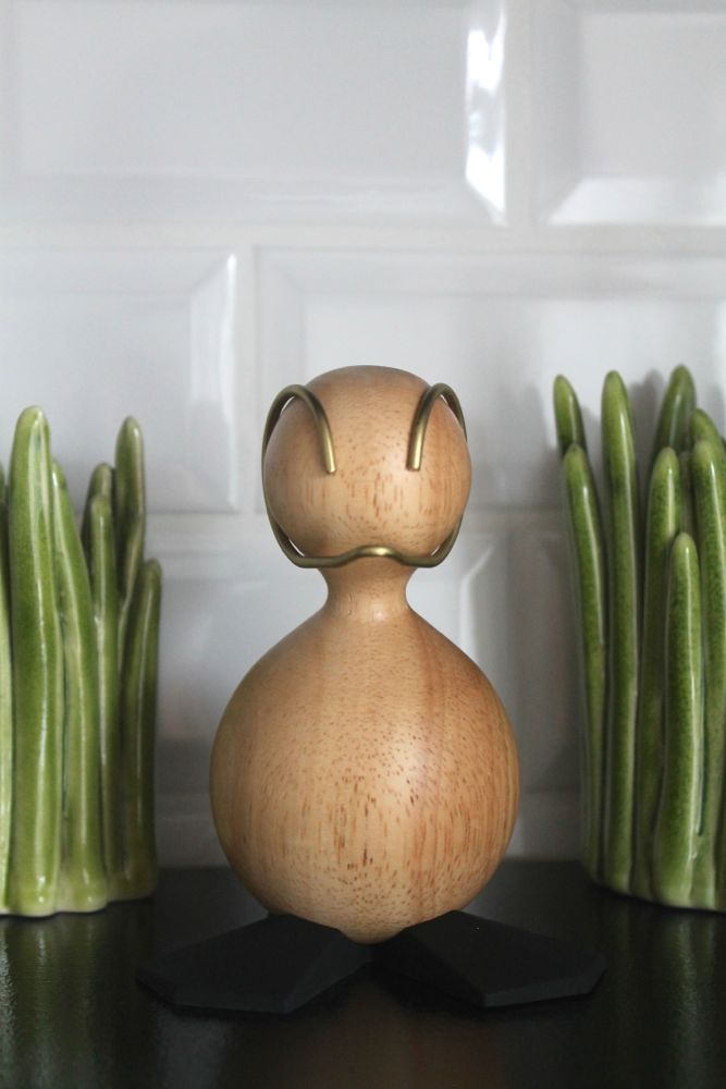 Aviendo-duck-grass1-boligblog.com